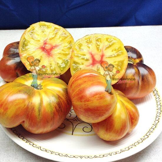 Alice's Dream Tomato Seeds