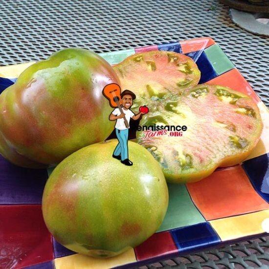 Ananas Noir Tomato