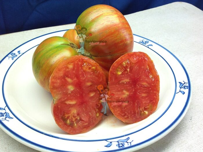 Beauty King Dwarf Tomato