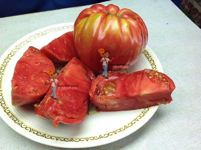 Behemoth King Tomato
