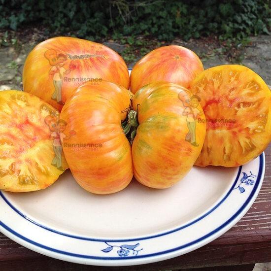 big orange stripe tomato