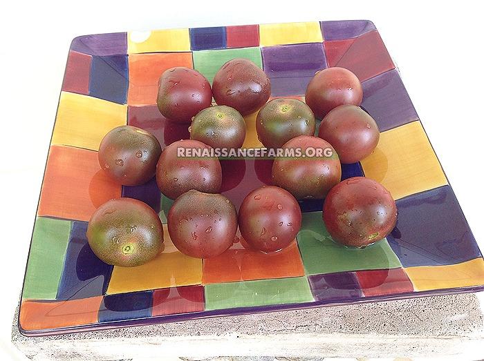 Black-Cherry-Tomato