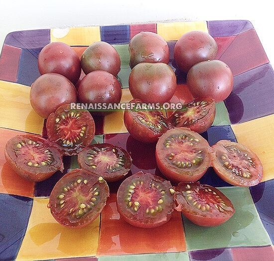 Black Cherry Tomatoes