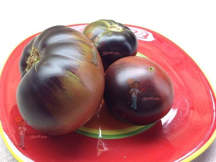 Black_Beauty_Tomato-2017