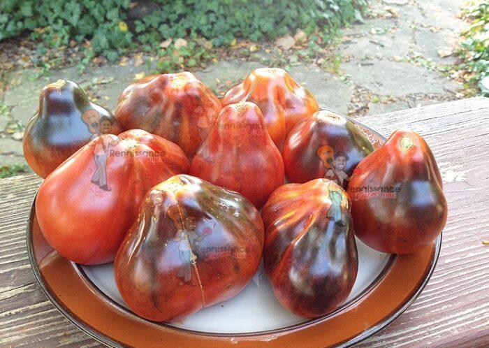Blue-Pear-Tomato