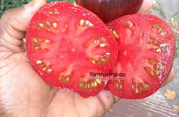 Blue Pear Tomato Sale