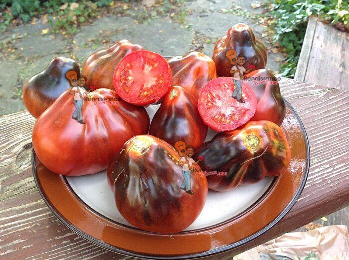 BluePear Tomato Seeds