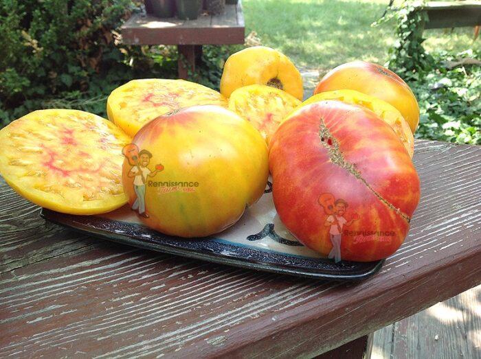 Blushing Bride Tomato