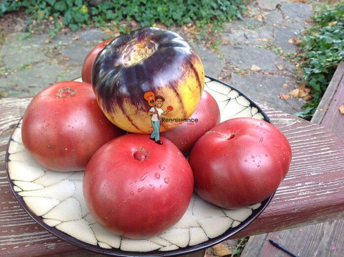 Cherokee Purple Great White Blues Tomato