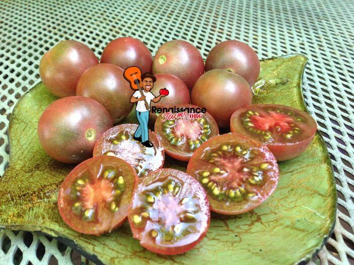 Chocolate Cherry Heirloom Tomato