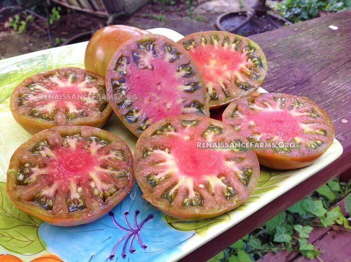 Chyornyi Tarasenko Tomato