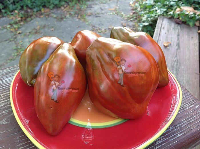 Cuban-Pepper-Like-Black-Tomato