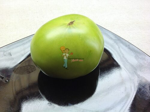 Dwarf Kelly Green Tomato