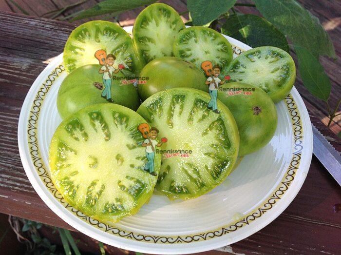 Dwarf Tomato Jade Beauty