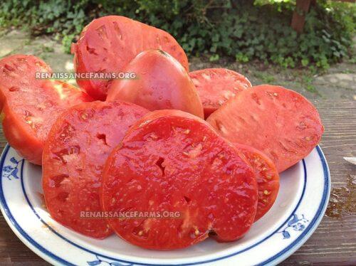 Giant_Heart_Climber_Tomato