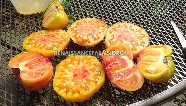 Hillbilly-Heirloom-Tomato-Slices