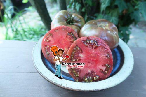 Indian Zebra Tomato