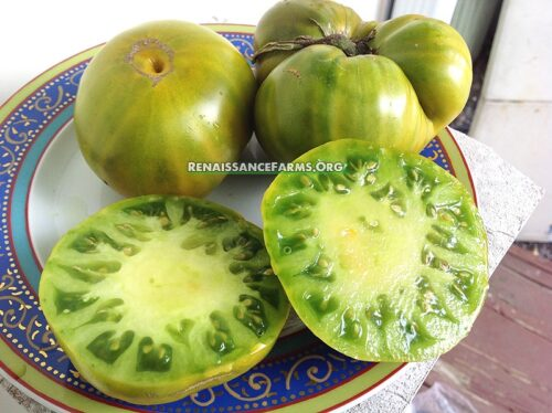 Malakhitovaya Shkatulka Tomatoes