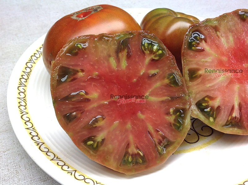 Maralinga Dwarf Tomato Seeds