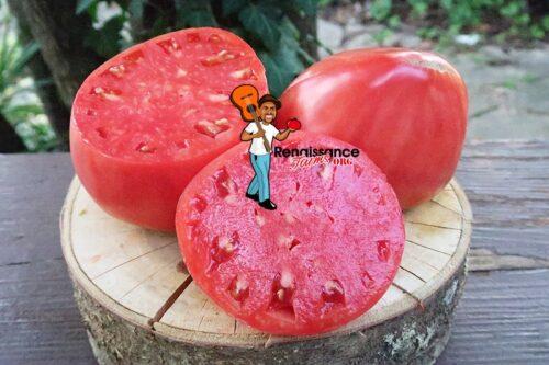 Monkey Ass Tomato