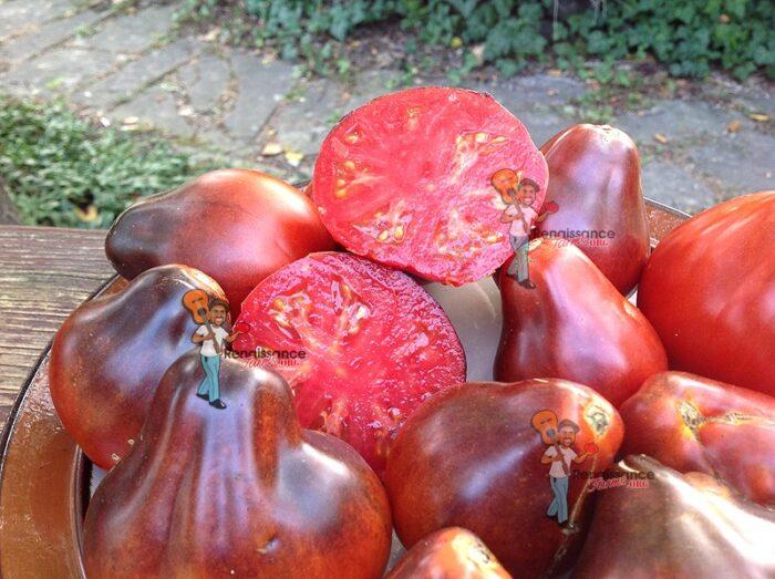 Tomato Blue Pear
