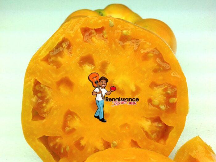 Amana Orange Tomato 3