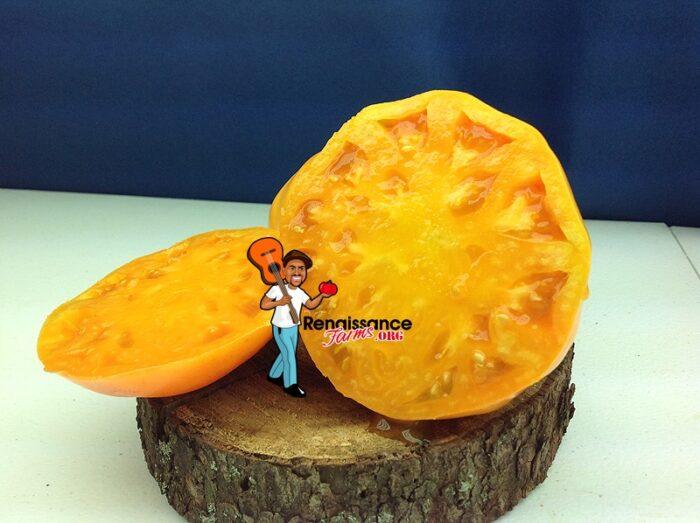 Amana Orange Tomato Picture