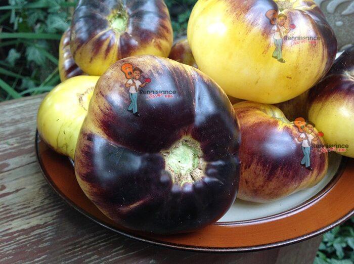 Great-White-Blues-Tomato