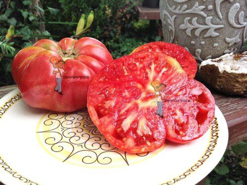 Ispolin Tomato