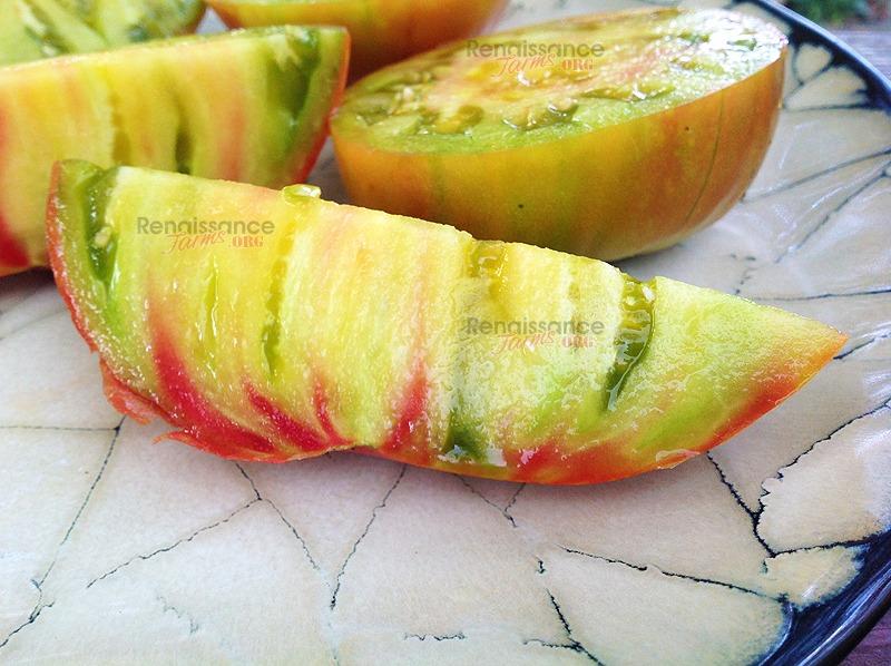 Muddy Mamba Tomato Picture