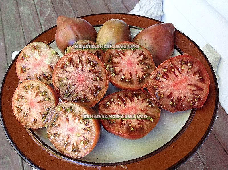 Purple Heart Dwarf Tomatoes