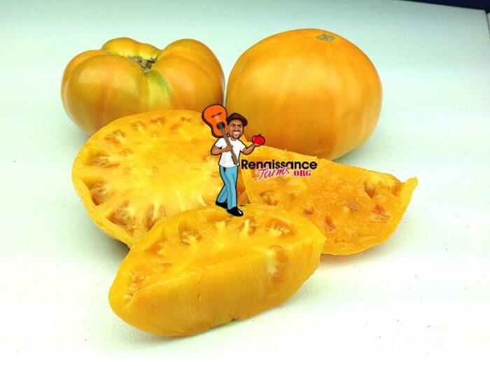Tomato Amana Orange