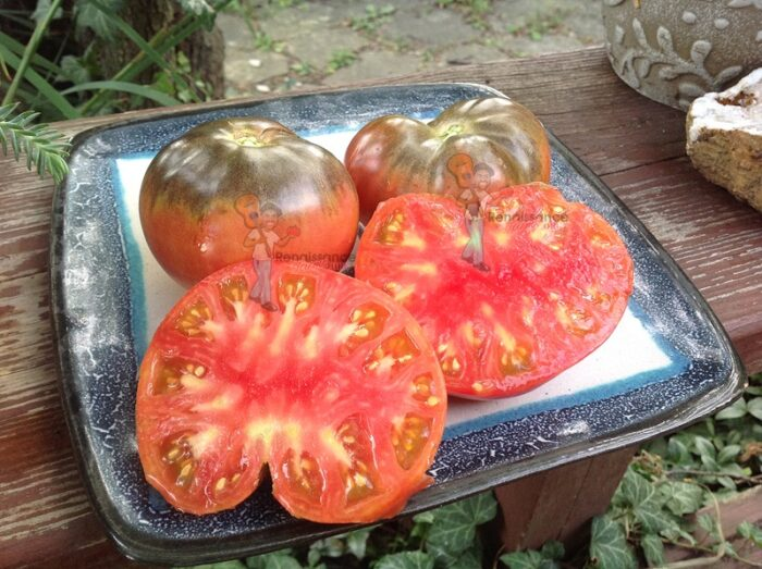 Dirty Curty Tomato