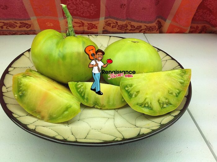 Aunt Ruby's German Green Tomato Picture