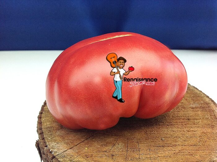 Anna's Kentucky Tomato 2018