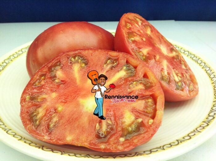 Anna's Kentucky Tomato 2019