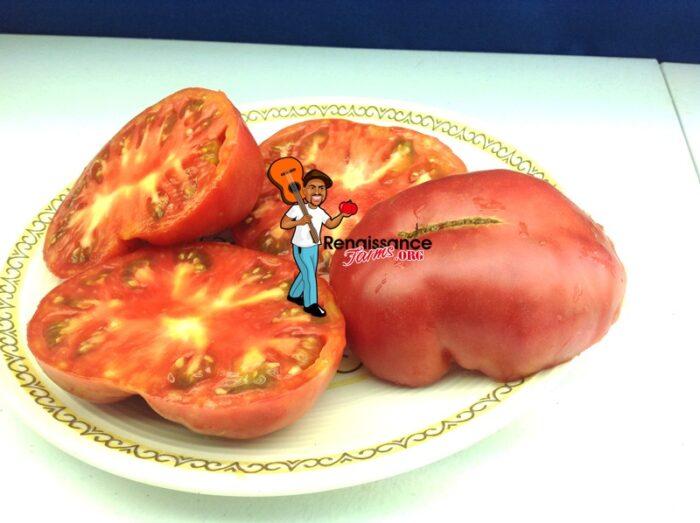 Anna's Kentucky Tomatoes