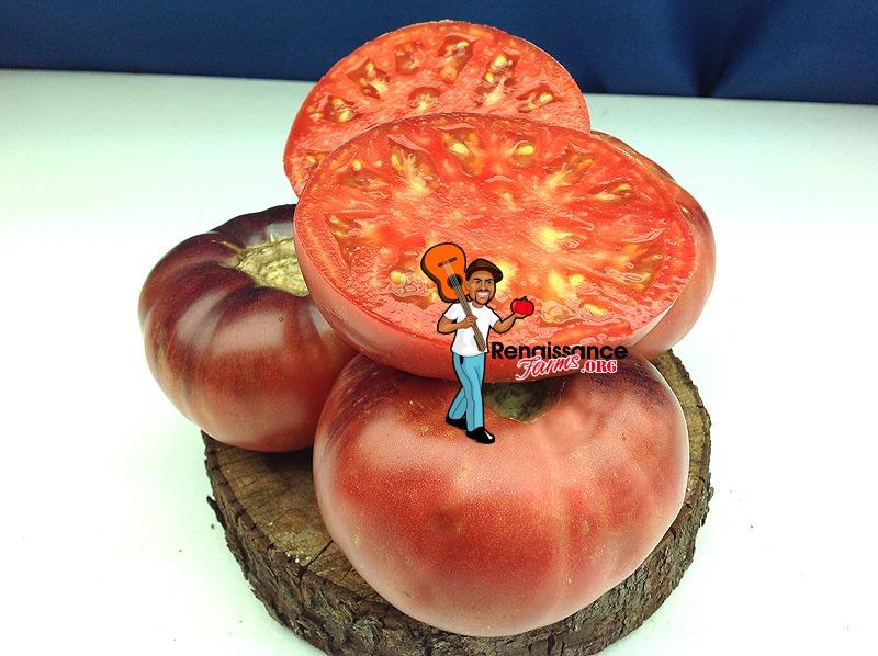 Aurora Blue Tomato Picture