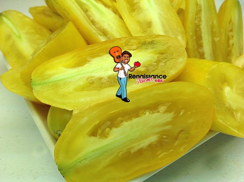 Banana Legs Tomato Pictures