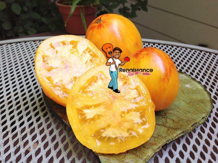 Beauty Queen Heart Tomato