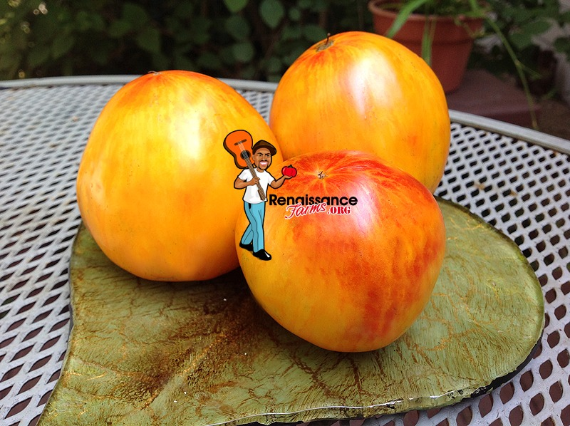 Beauty Queen Heart Tomatoes