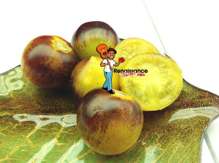 Belle Coeur (H34 Gelb) Tomatoes