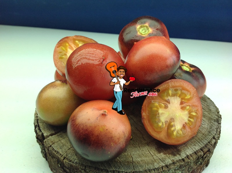 Belle Coeur (H34 ROT) Tomato Picture