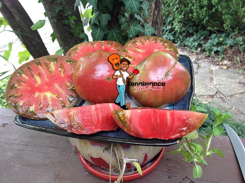 Big Cheef Tomatoes