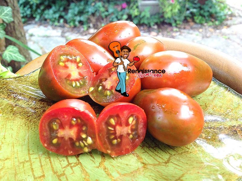 Black Dragon Tomato