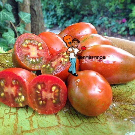 Black-Dragon-Tomato
