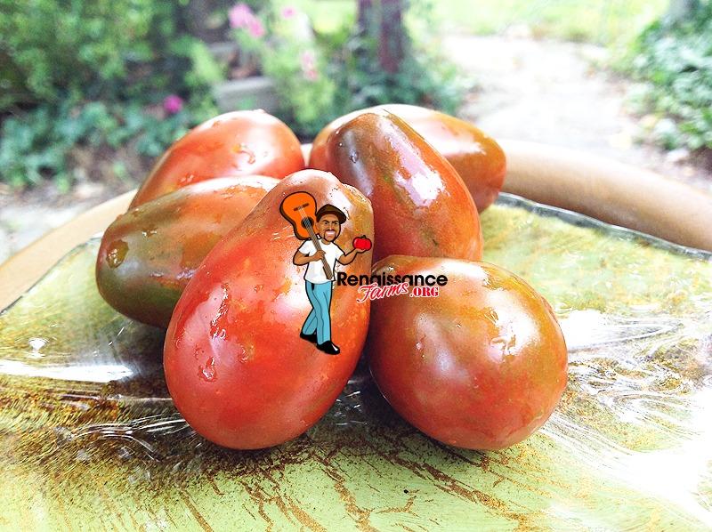 Black Dragon Tomatoes