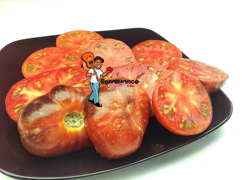 Blue Fire Heirloom Tomato