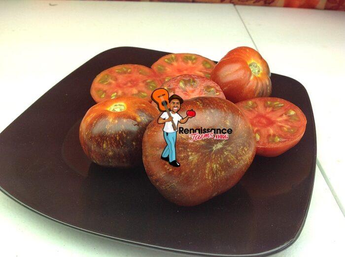 Blue Fire Tomato 2018