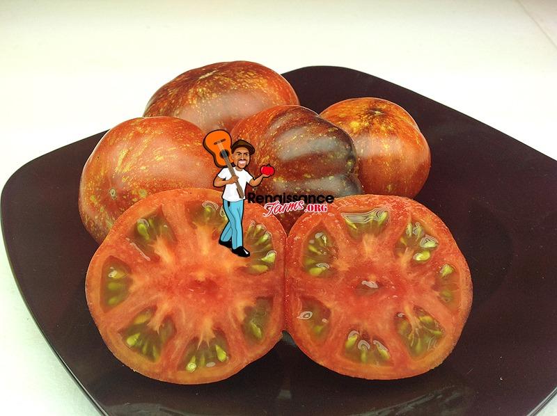 Blue Fire Tomato 2019